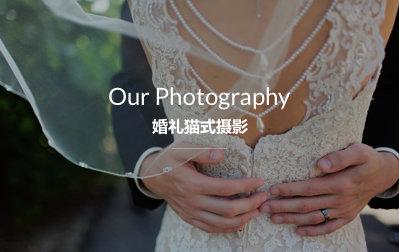 婚礼猫式摄影